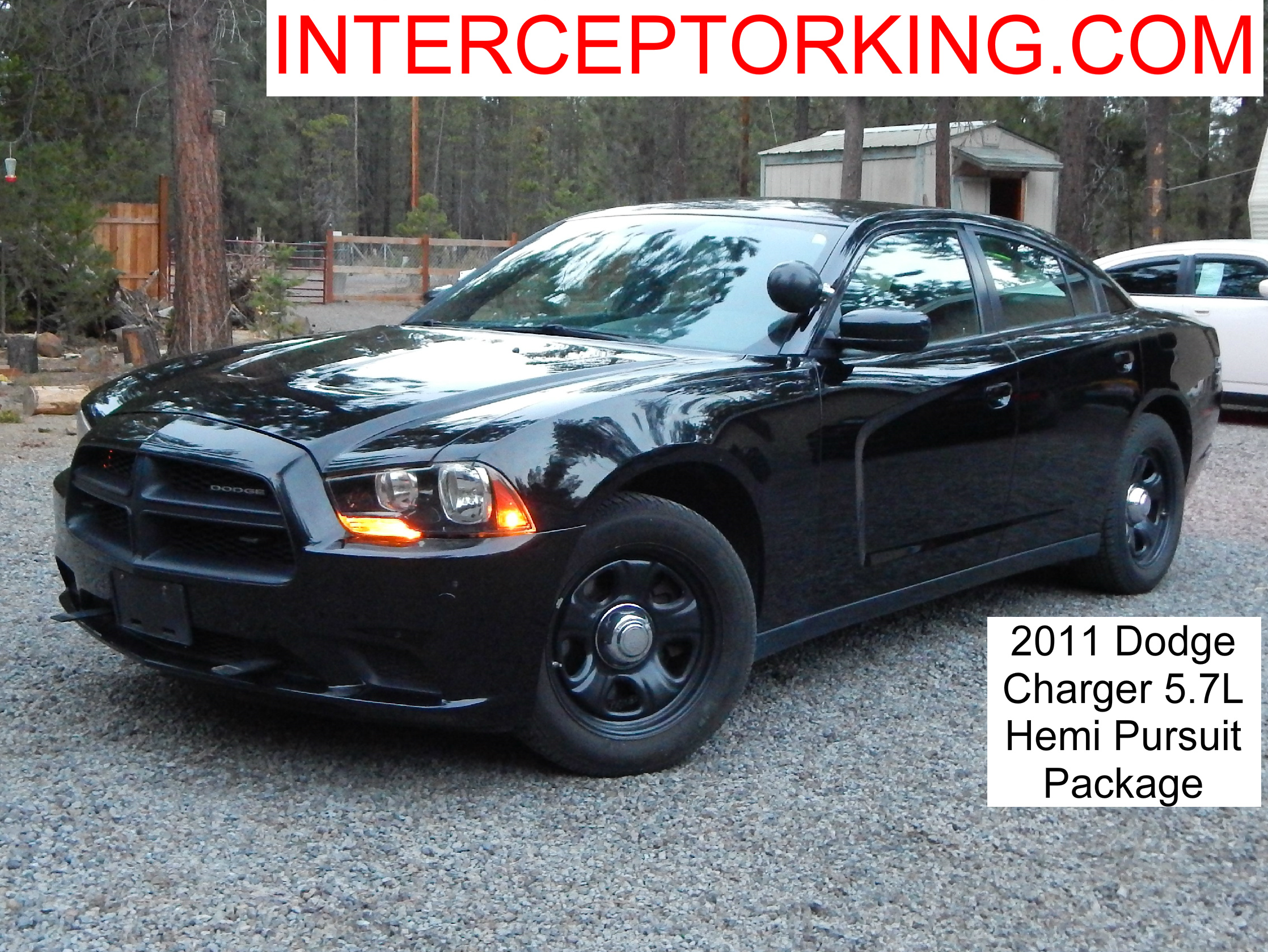 2011 dodge charger pursuit package 5 7l hemi interceptor. Black Bedroom Furniture Sets. Home Design Ideas